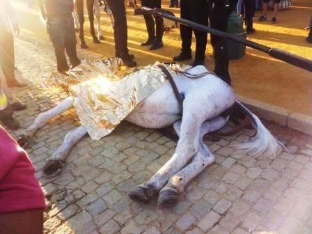 caballo muerto Feria de Abril 2014